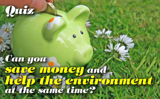 Help the Environment and Save on Energy Bills