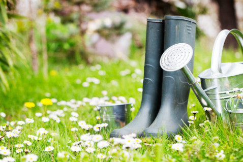 rain-boots-water-can-metal-pails-green-lawn